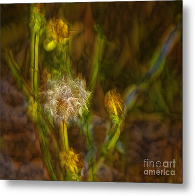 Metal Print featuring the photograph Weed Art by Shirley Mangini