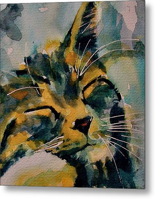 Weeeeeee Sleepee Metal Print by Paul Lovering