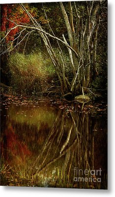 Weeping Branch Metal Print