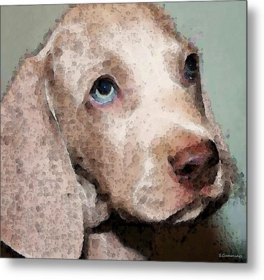 Weimaraner Dog Art - Forgive Me Metal Print by Sharon Cummings