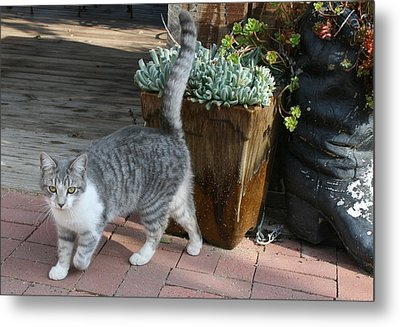 Welcome To My Garden. Metal Print