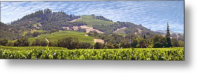 Welcome To Wine Country Metal Print by Mike McGlothlen