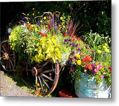Welcome Wagon Metal Print by Kathy Bassett