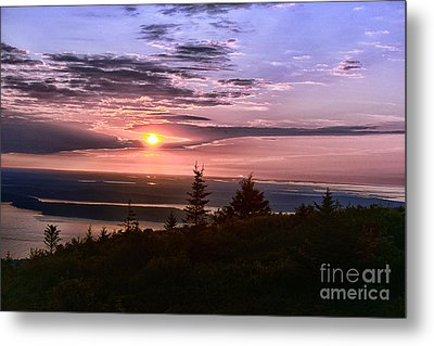 Welcoming A New Day Metal Print by Arnie Goldstein