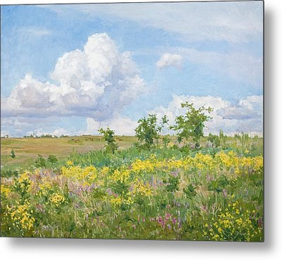 Well-dressed Land Metal Print by Victoria Kharchenko