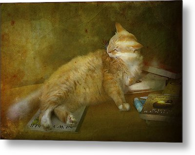 Well Read Metal Print