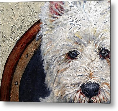West Highland Terrier Dog Portrait Metal Print