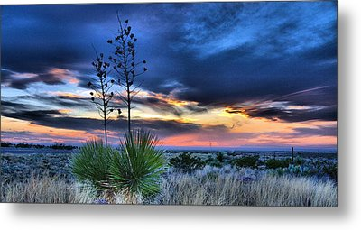 West Texas Yuccas Metal Print