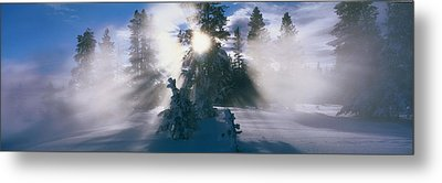 West Thumb Geyser Basin Yellowstone Metal Print by Panoramic Images