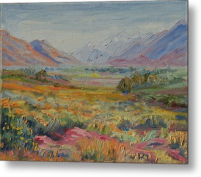 Western Cape Mountains Metal Print by Thomas Bertram POOLE