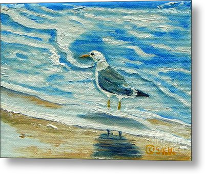 Wet Feet - Shore Bird Metal Print by Shelia Kempf