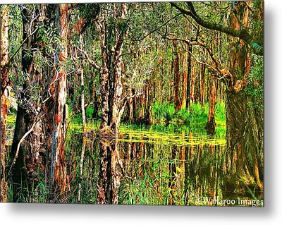 Metal Print featuring the photograph Wetland Reflections by Wallaroo Images