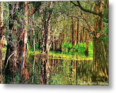 Wetland Reflections Metal Print by Wallaroo Images