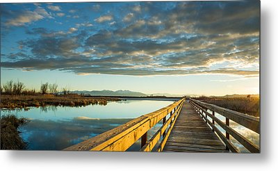 Metal Print featuring the photograph Wetland Wooden Path by Jeremy Farnsworth