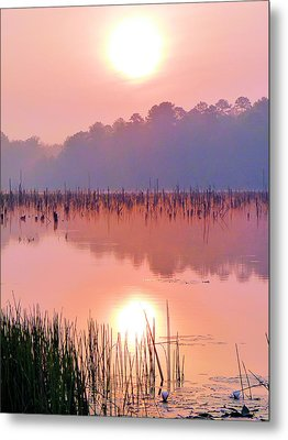 Wetlands Sunrise Metal Print by JC Findley