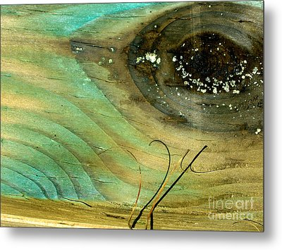 Whale Eye Metal Print by Michael Cinnamond