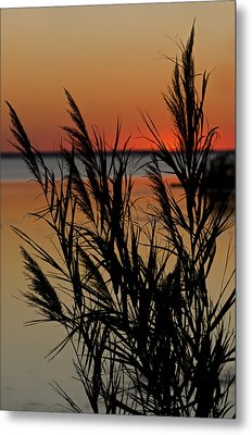 Metal Print featuring the photograph Whalehead Sunset Obx II by Greg Reed