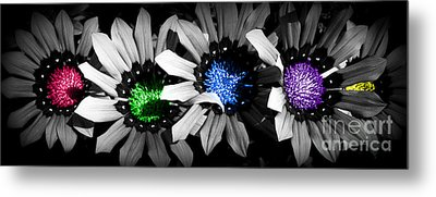Metal Print featuring the photograph Colored Blind by Janice Westerberg