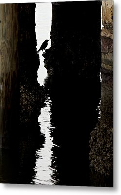 What Lies Beneath Metal Print by Penny Meyers