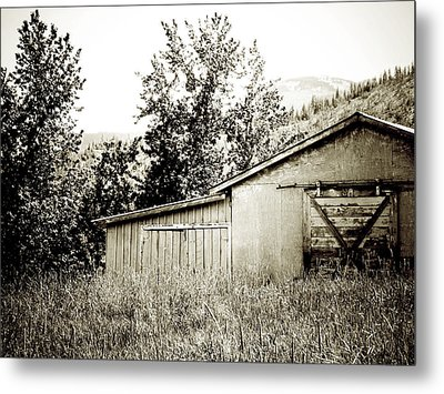 What Remains Metal Print by Terry Eve Tanner