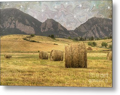 What The Hay Metal Print by Juli Scalzi