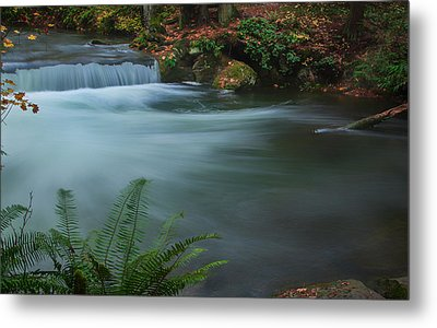 Metal Print featuring the photograph Whatcom Falls Park by Jacqui Boonstra
