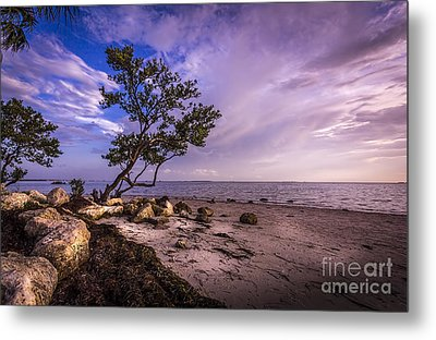 What's Beyond Metal Print by Marvin Spates
