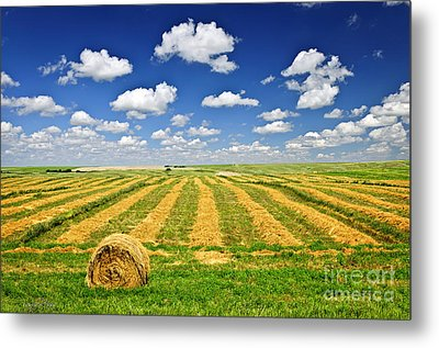 Wheat Farm Field And Hay Bales At Harvest In Saskatchewan Metal Print by Elena Elisseeva