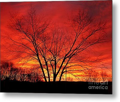 When Morning Guilds The Skies Metal Print by Christian Mattison