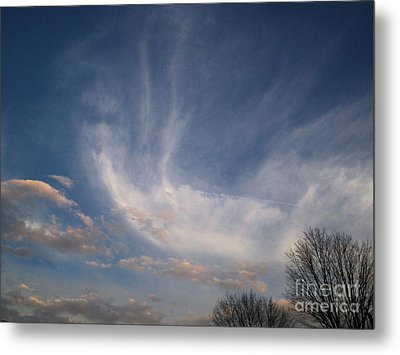 Where Does The Wind Come From Metal Print