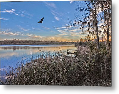 Where Eagles Fly Metal Print by Donnie Smith