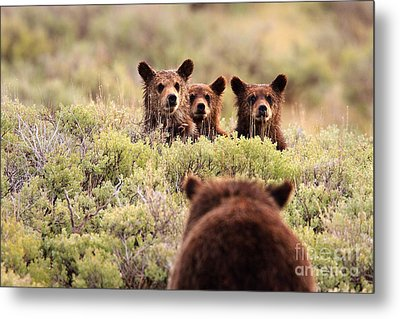 Where Is Your Brother Metal Print by Aaron Whittemore
