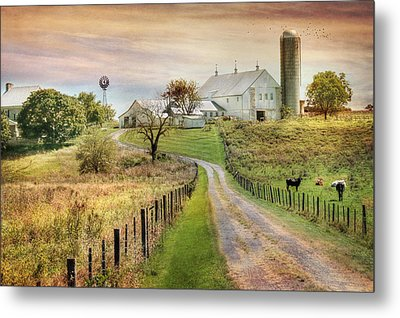 Where Life Is Found Metal Print by Lori Deiter