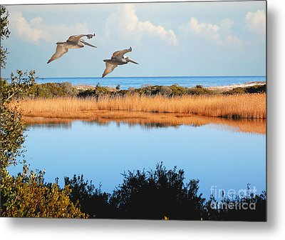 Where The Marsh Meets The Atlantic Metal Print