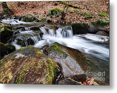 Where The River Flows Metal Print by Paul Ward