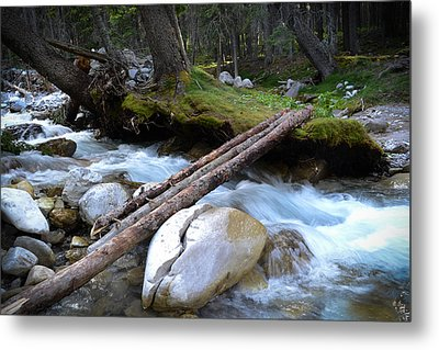 Where The Water Flows Metal Print by Dwayne Schnell
