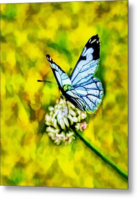 Metal Print featuring the painting Whimsical Butterfly On A Flower by Tracie Kaska