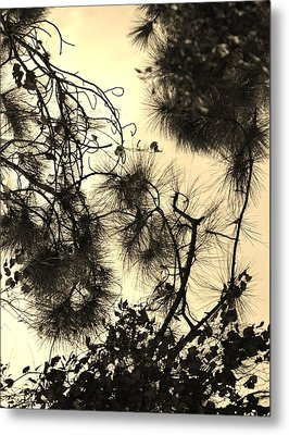 Whimsical Study Metal Print