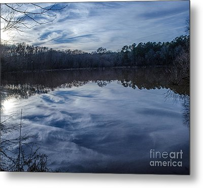 Whipped Cream Reflection Metal Print by Donna Brown