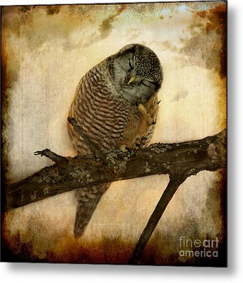 Whispered In The Sounds Of Silence Metal Print by Heather King