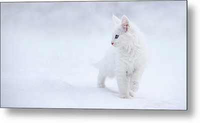 White As Snow Metal Print by Esm?e Prexus