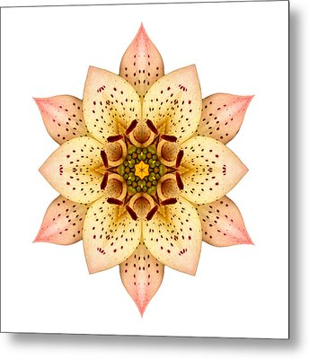 Asiatic Lily II Flower Mandala White Metal Print