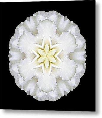 White Begonia I Flower Mandala Metal Print