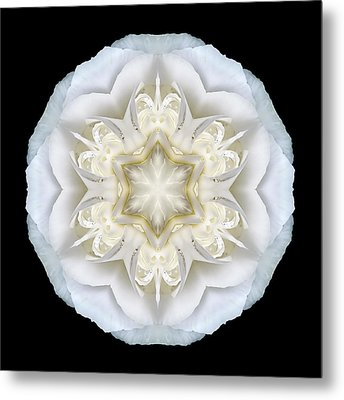 White Begonia II Flower Mandala Metal Print by David J Bookbinder