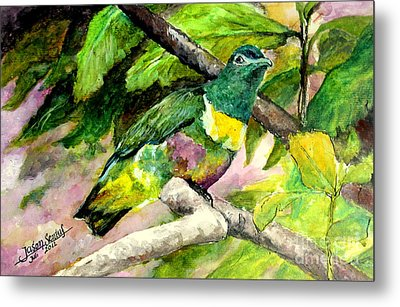 White-bibbed Fruit Dove  Metal Print