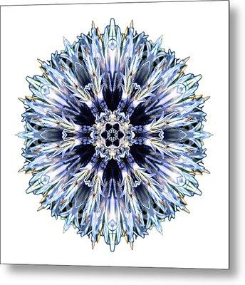Blue Globe Thistle I Flower Mandala White Metal Print