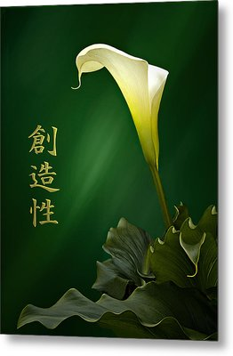 White Calla Lily Metal Print by Judy  Johnson