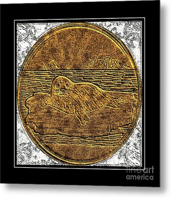 White Coat Seal - Brass Etching Metal Print by Barbara Griffin