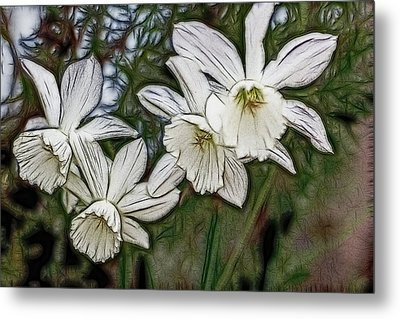 Metal Print featuring the digital art White Daffodil Flowers by Photographic Art by Russel Ray Photos