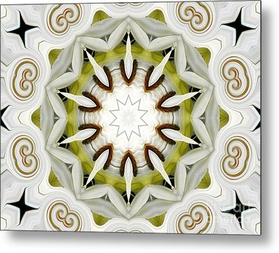 Metal Print featuring the photograph White Daisies Kaleidoscope by Rose Santuci-Sofranko